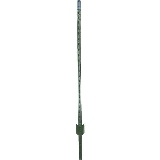 W. Silver 6 Ft. Steel 1.33 Lb/Ft. Fence T-Post