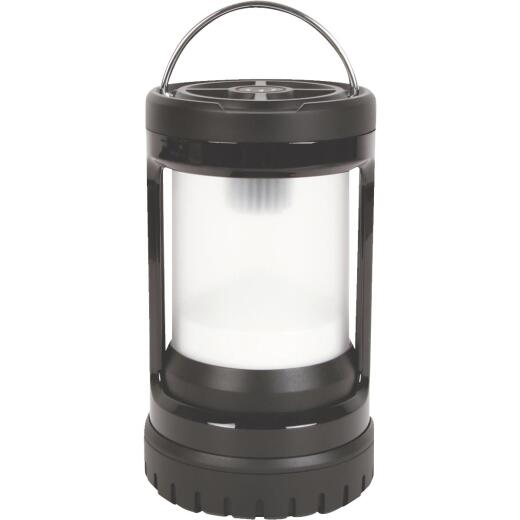 Coleman Divide + Push LED Black Battery Lantern